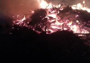 Scheiterhaufen oder Lagerfeuer? (Bild: A.Fischer)
