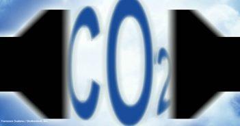 Klima Koalition