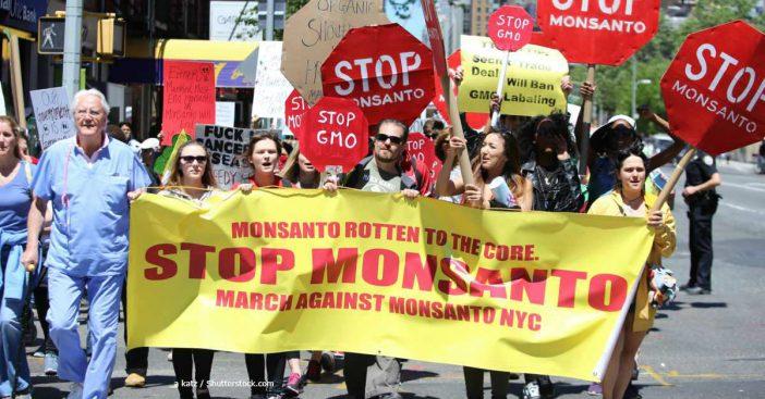 Demo gegen Monsanto, NY
