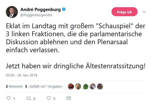 poggenburg twitter