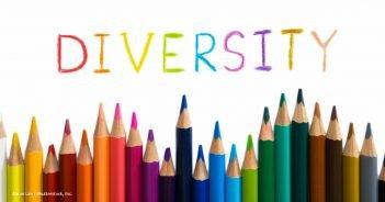 Diversity Farbstifte
