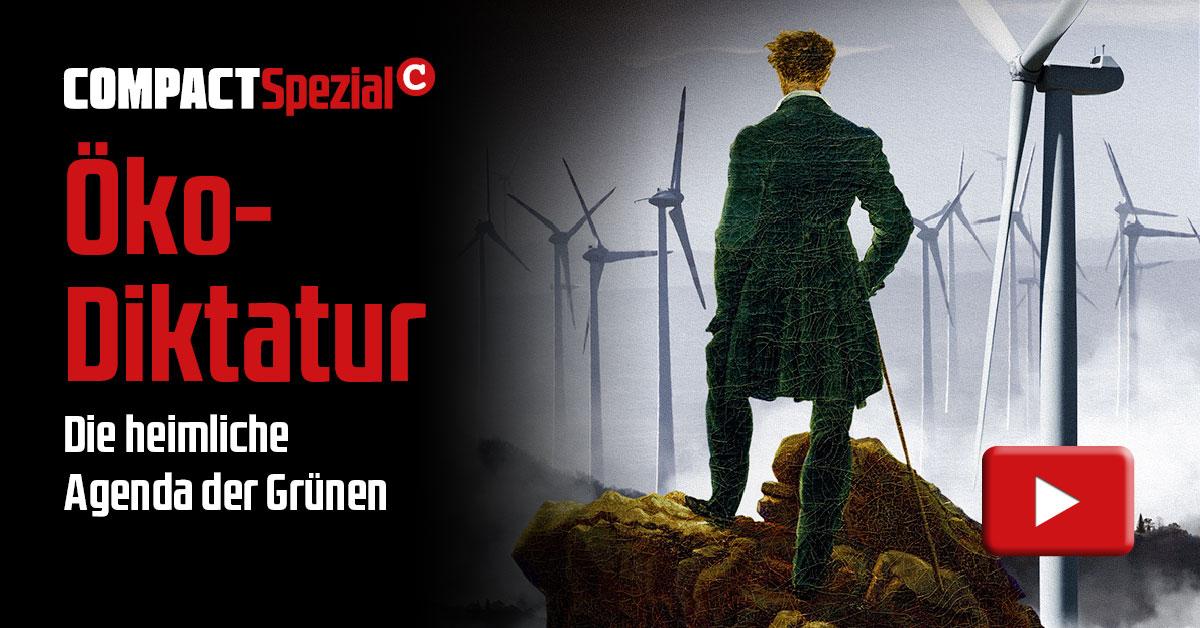 Öko-Diktatur. Die heimliche Agenda der Grünen