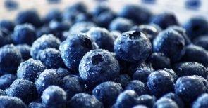 Der große Vitamin-Irrtum. Warum falsche Ernährung nicht hilft.
