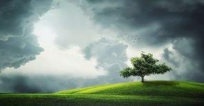 Lebenszeit verlängern: Bluthochdruck mit natürlichen Mitteln senken!