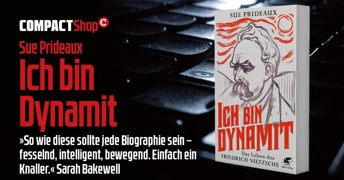 Sue Pridaux: Ich bin Dynamit. Nietzsche