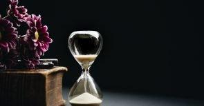 Ein paar Geheimtipps aus der Natur im Kampf gegen das Altern gefällig?